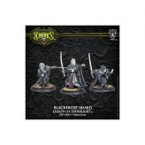 Legion of Everblight Blackfrost Shard Character Unit (3)...