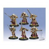 Protectorate Knights Exemplar Unit Box (plastic) PIP32082